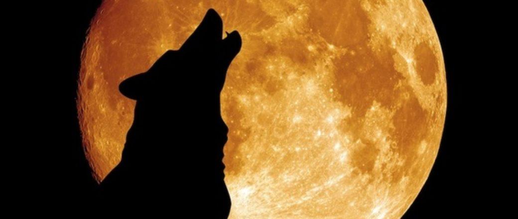 Ο λύκος, ο καβαλάρης και η κόκκινη σελήνη